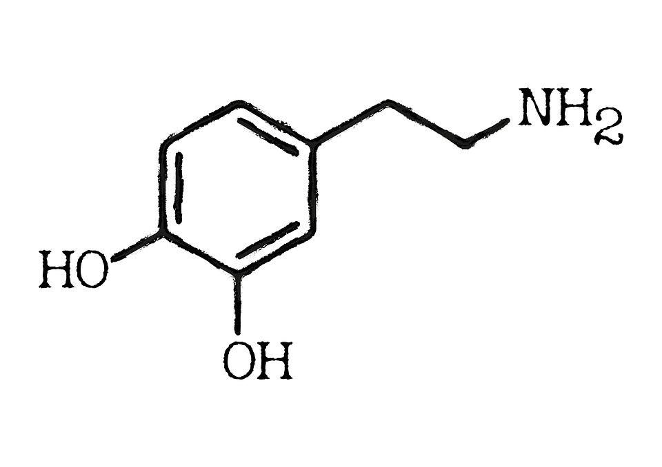 Molekula dopamina